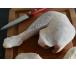 livraison rouen Cuissse de poulet bio
