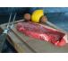 FAUX-FILET DE BOEUF CIDRÉ normandie viande heritage millesime boeuf kobé normand