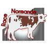 une image de Race Normande