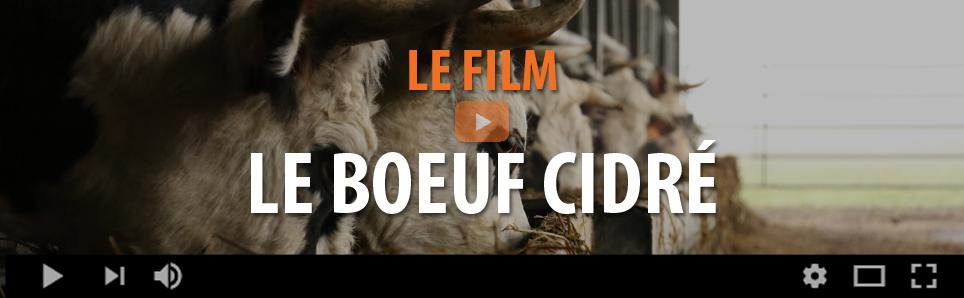 LE BOEUF CIDRÉ - LE FILM