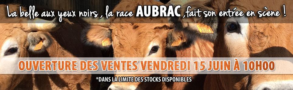 La belle aux yeux noirs, la race Aubrac, fait son entrée en scène ! Ouverture des ventes Vendredi 15 Juin à 10h !
